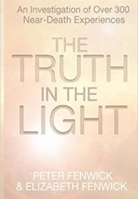 The Truth in the Light Book Cover